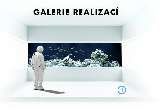 Realizace akvárií