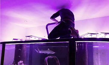 Servis a údržba akvárií