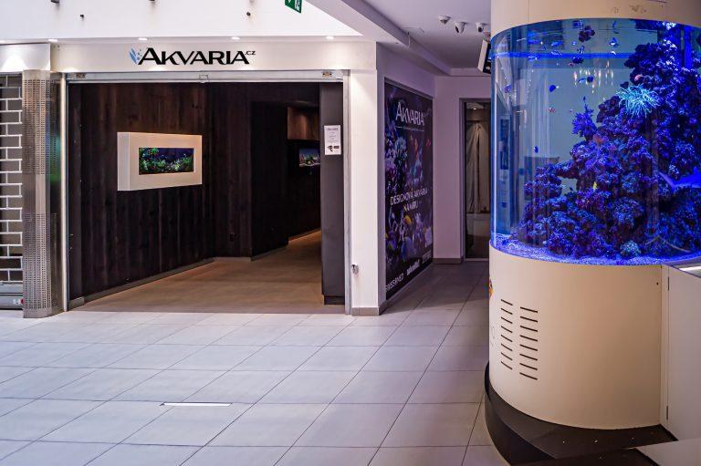 Akvarium nejen na zeď