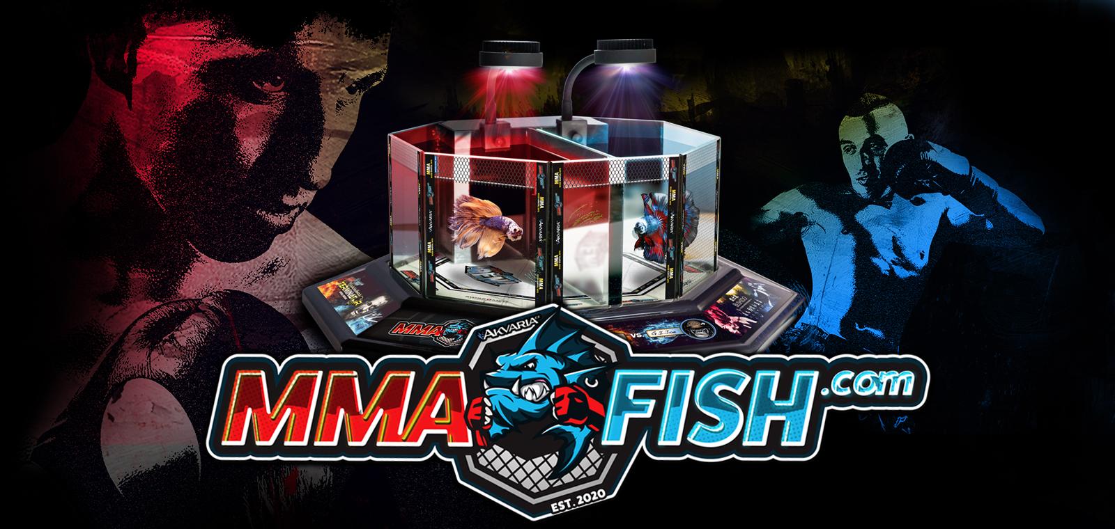 MMA Fisch akvárium